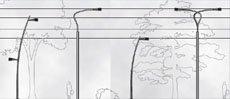 New Archilede/Lavinia poles